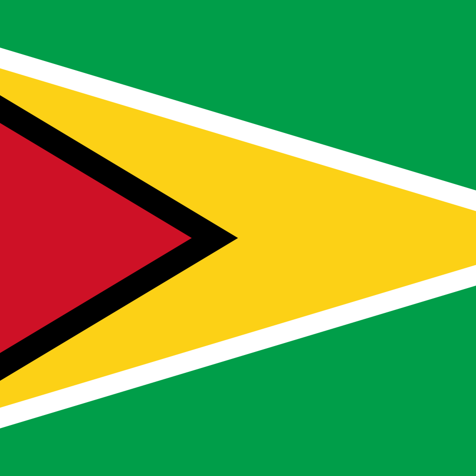 Guyana Country Flag